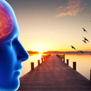 Formation de psychologie en  ligne
